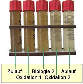 Biologisch-oxidativer Schadstoffabbau in unserer Wasseraufbereitungsanlage