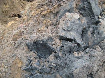 Ungewaschener Boden